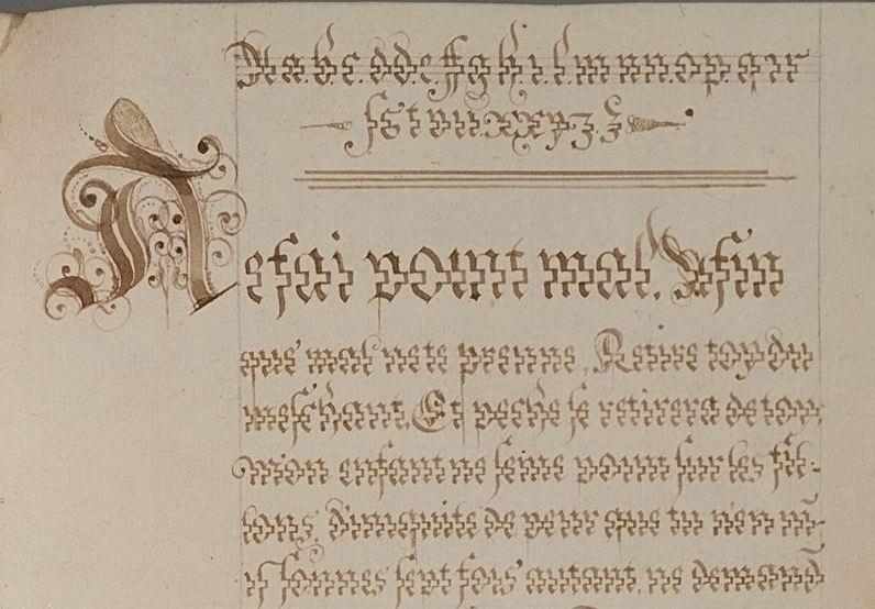 pig-script